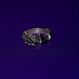 Bone and Feather Silver Ring