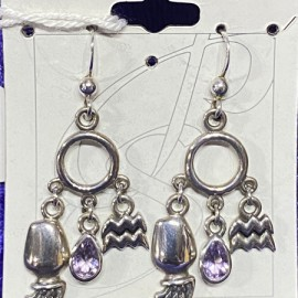 Aquarius Earrings with Birthstone