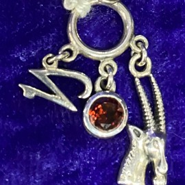 Capricorn Pendant with Birthstone